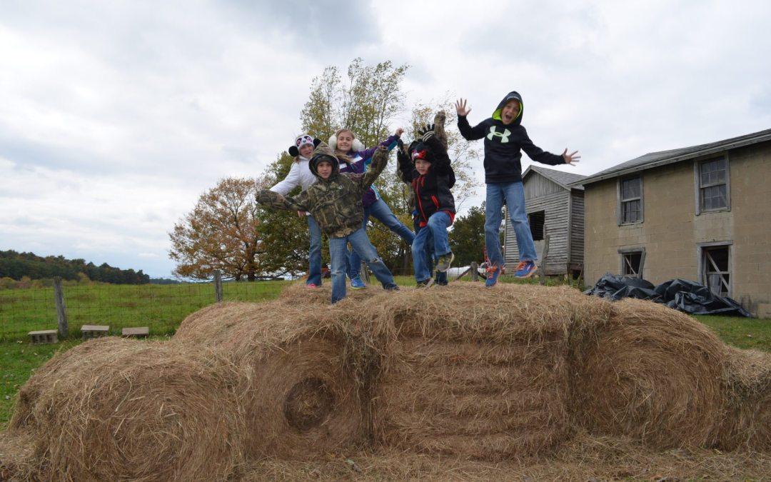 Paul's Pumpkin Patch – Fall Family Fun on the Farm