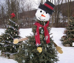 Christmas In The Country Erie Pa 2021 Merry Christmas From Pennsylvania S Great Outdoors Region Visit Pa Great Outdoors