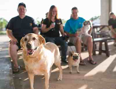Pearland Patio BAKFISH Dog Friendly
