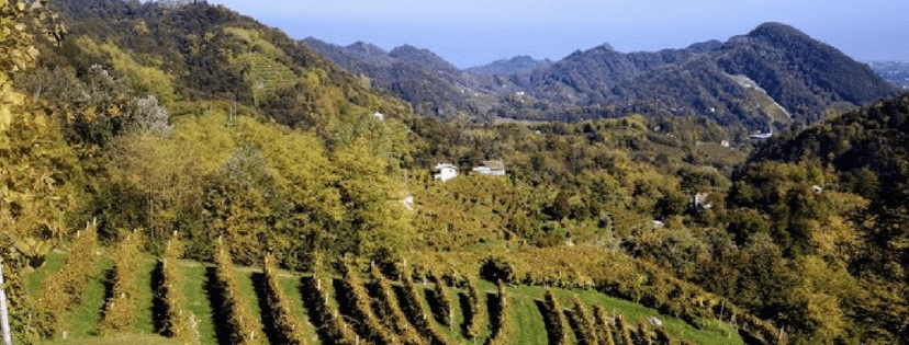 Visit Prosecco Italy Rolling Hillsides