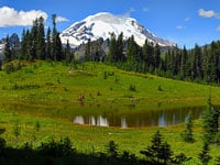 Tipsoo Lake at Chinook Pass © Deby Dixon