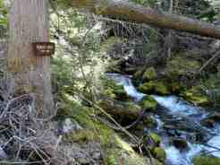 Ranger Creek crashes along and below the trail for a couple of miles © Craig Romano