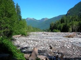Carbon River © Craig Romano