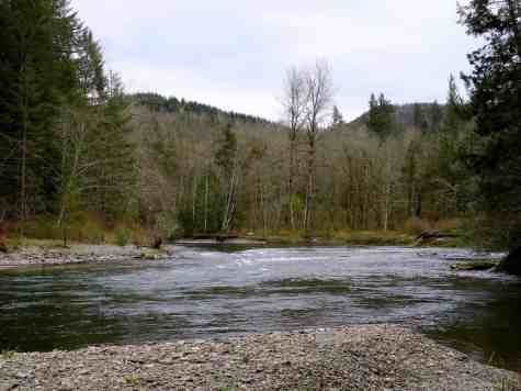 A much gentler river can be found upstream in the park than downstream near the gorge © Craig Romano