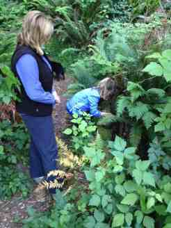 digging for cache
