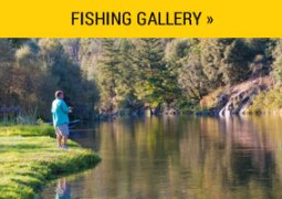 gallery_fishing