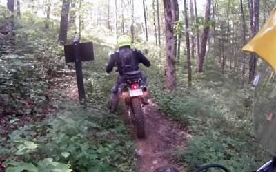 Unicoi Trail #82