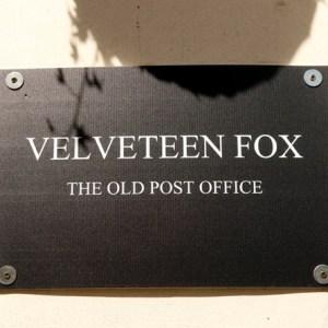 Velveteen Fox