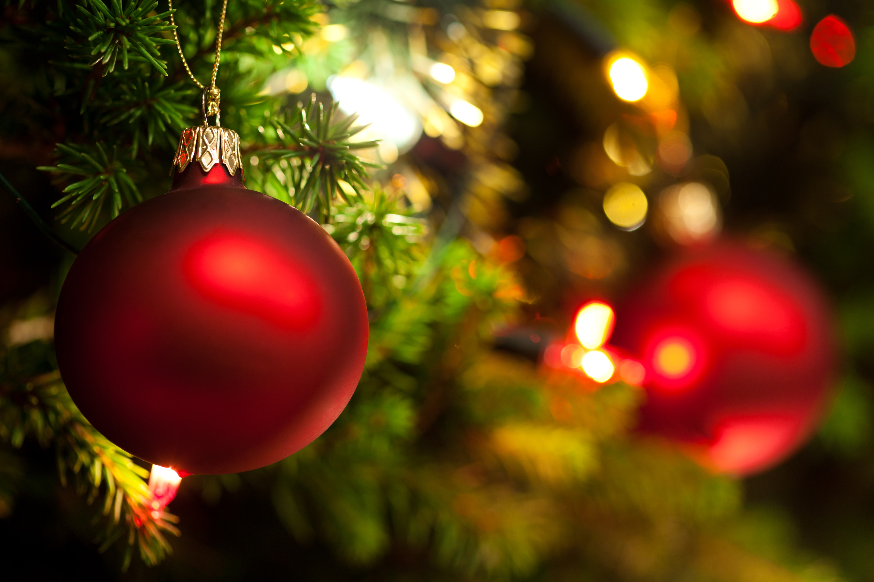 Holiday Happenings In Yolo County