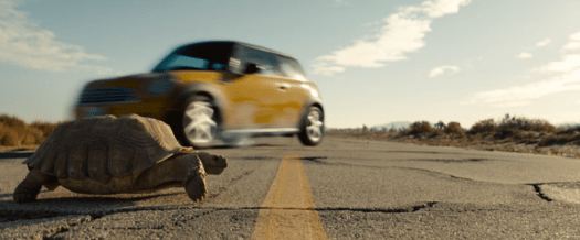 Goliath Season 3: The weird and the wonderful. Why did the tortoise cross the road?