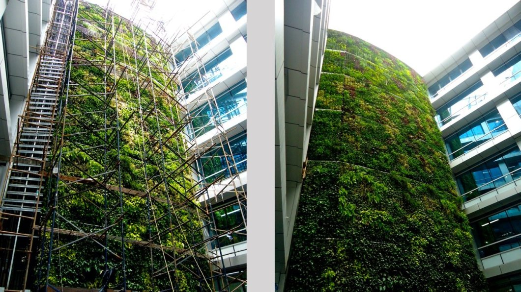 Green Walls- Fusing Technology with Nature