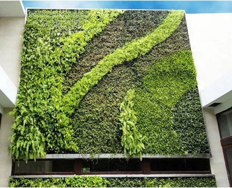 What Does Vertical Gardening Involve?