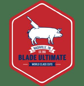 Nashville Logo Design 1