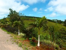 Welcome to Vista Valverde Pacific View B&B! Your gateway to San Ramon Costa Rica