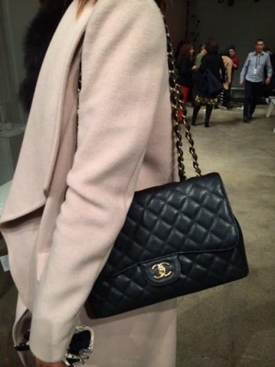 BCBG Coat, Derek Lam blouse, Chanel Bag, Club monaco snakeskin gloves