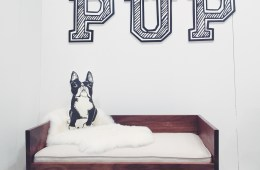 Potential new digs for my dog #RufusLupo, the VT Mascot by Pup and Kit