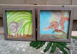 Two framed drawings, one is of a snail and the other is of a snake on a tree branch