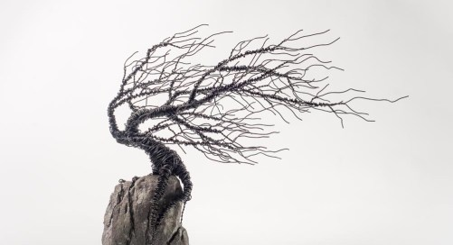 Wire Sculpture Workshop for Beginners with Glenn Gibson, Galway