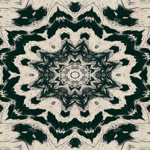black and tan kaleidoscopic image