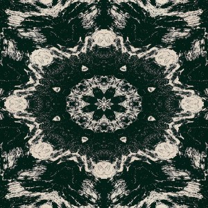 black and tan terrain kaleidoscopic image
