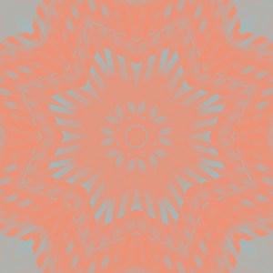 vibrant coral and gray digital star