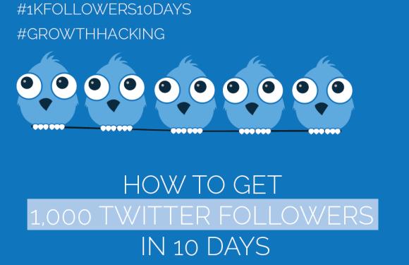 #Twitter Day 5 – Get 1,000 Twitter Followers in 10 Days [#1kfollowers10days #GrowthHacking]