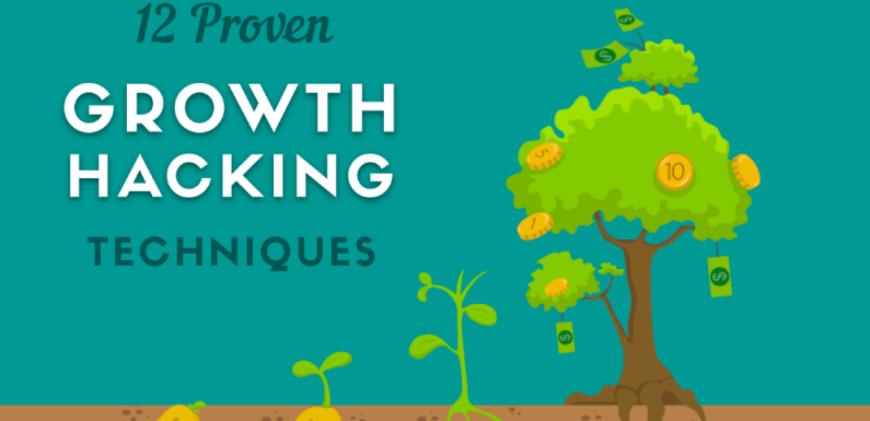 12 Proven Growth Hacking Techniques [Infographic]