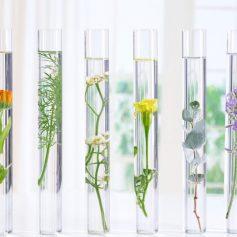 #jakpřilákatzákazníky #provonime_cesko #interierove_vune #originalfragrance #scent #scentmarketing #directmarketing #podporaprodeje #businesspassion #aromadiffuzer #visualexpert_eu