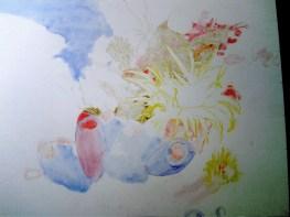 corals sketch