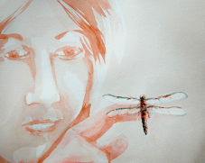 2013 Dragonfly 2.jpg