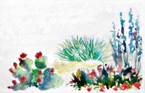 Native TX garden 2