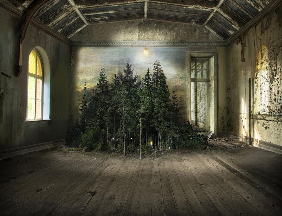 SUZANNE MOXHAY - Artist Focus