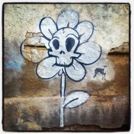 DEAD FLOWER HUESCA