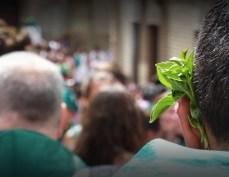 Fiestas de San Lorenzo 2016 Jaime Esparrach sl2016-1