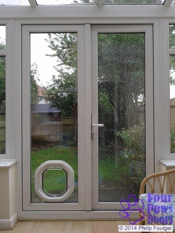 door with dog door you ll love in 2021