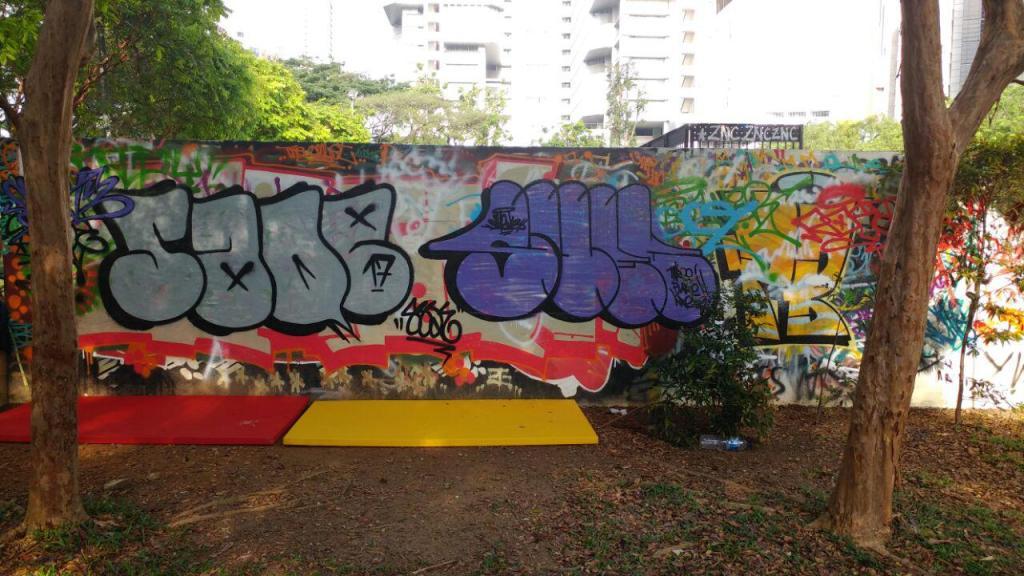 Visualinsite - Somerset Skate Park, 1 Somerset Rd, Singapura (04)