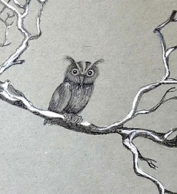 owl, pencil hb, 2b, white