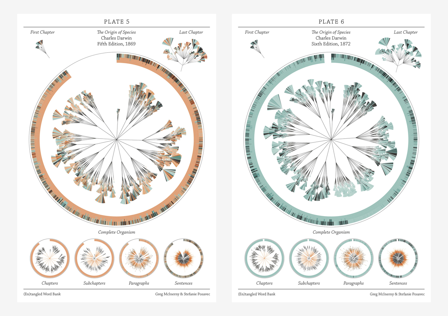 There is grandeur in this view of life – visualising Darwin
