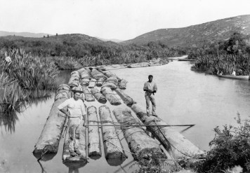 Kauri boom, Whenuakite Creek, between 1859-1900. The two men are unidentified.