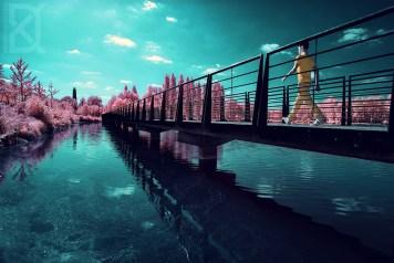 Infrared photo by David Keochkerian