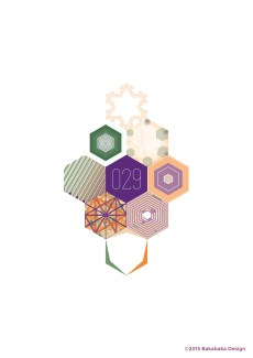 Hexagon-project-029