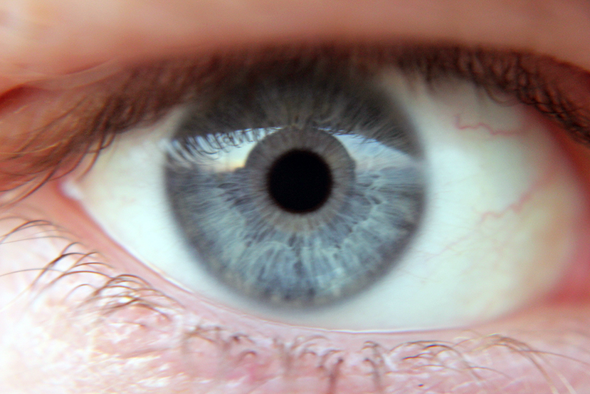 Are Smart Contact Lenses Here to Efface Privacy?