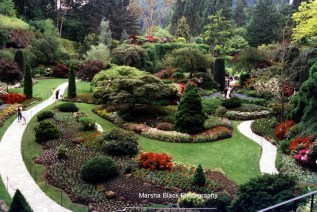 Butchart Gardens in Victoria on Vancouver Island, BC | Marsha J Black