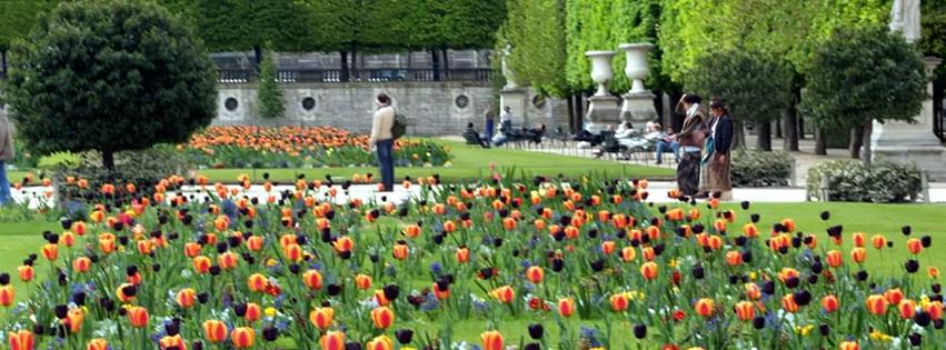 Spring Planting of Tulips, Tuilléres, France  Marsha J Black