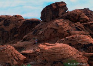 Valley of Fire in the Red Rock State Park, Nevada | Marsha J Black