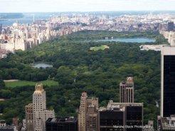 Overlooking Central Park, New York | Marsha J Black
