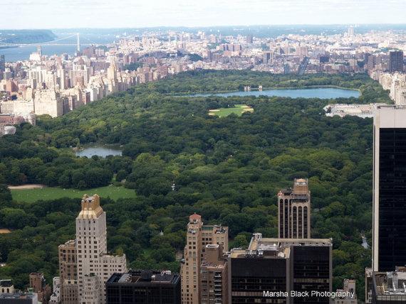 Overlooking Central Park, New York   Marsha J Black