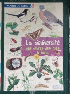 Biodiversity of Paris