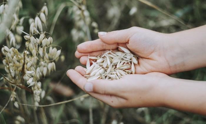 Gesunder Lebensstil – 7 Mythen