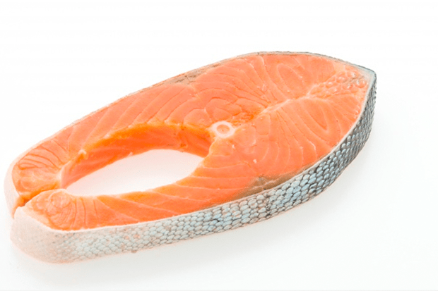 alimentacao-cuidado-com-os-peixes-criados-em-cativeiro-4